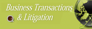 Business Transactions and Litigation Attorney in Miami, Florida.